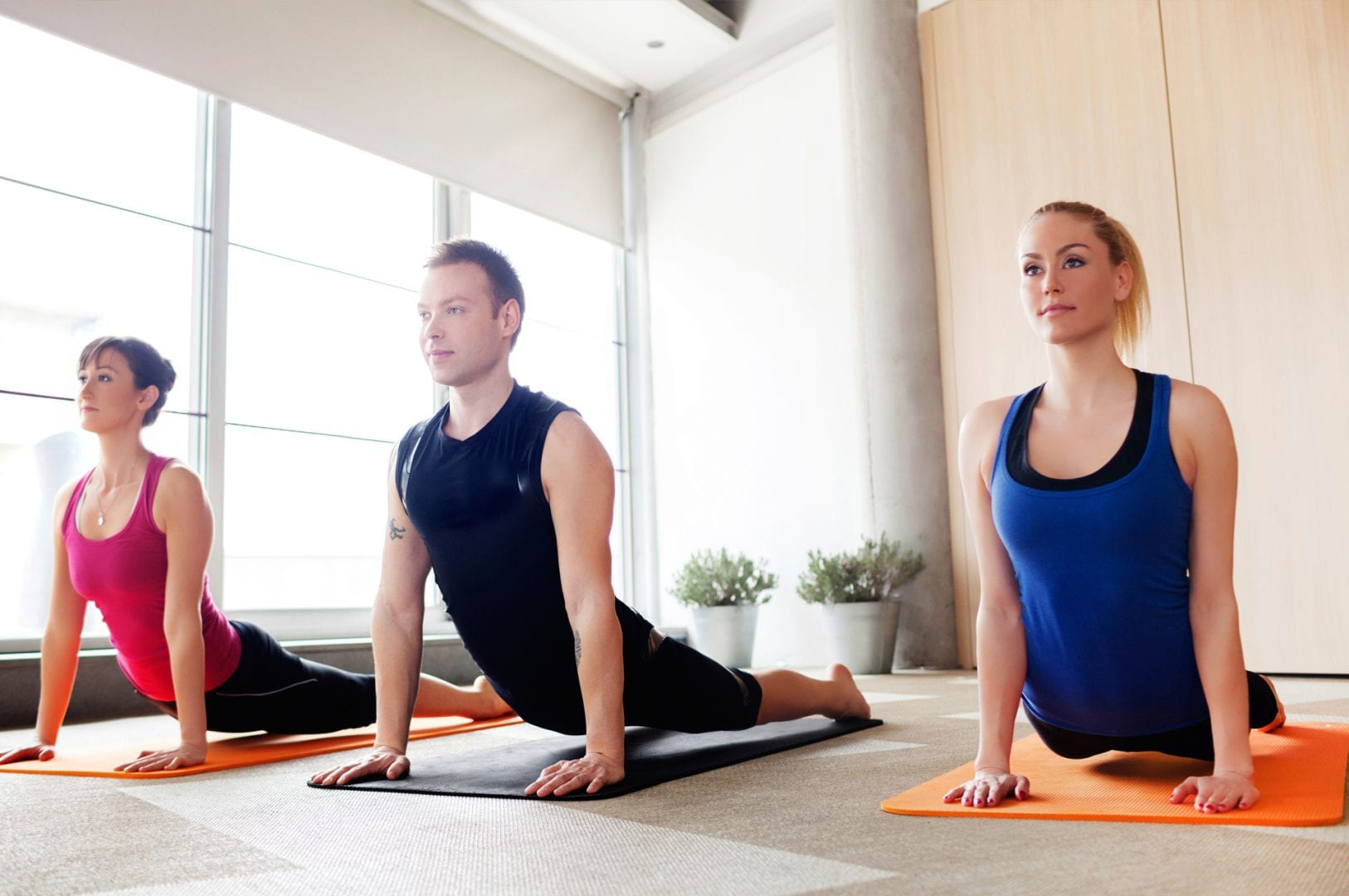 gym-members-on-yoga-mats-in-yoga-pose-in-fitness-center-studio
